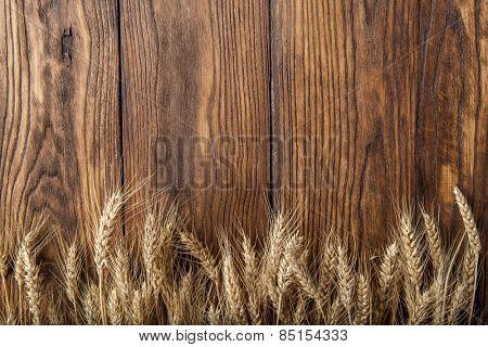 wheat on wooden background. top view