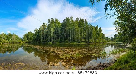 Pond in forest under blue sky. Panoramic image from several pictures.