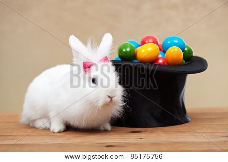 Cute bunny guarding a magician hat full of easter eggs