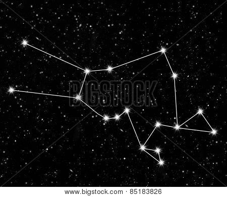 constellation Taurus against the starry sky