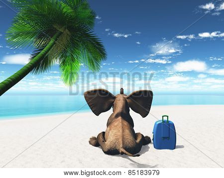 3D render of an elephant sat on a beach with suitcase