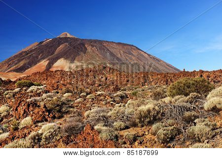 El Teide National Park, Tenerife, Canary Islands, Spain