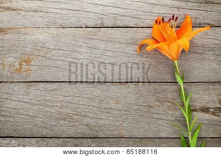 Orange lily flower on wooden table background with copy space