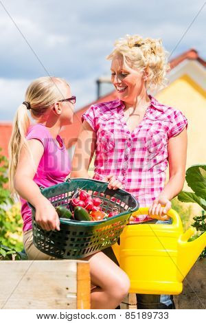 Mother and daughter working in garden harvesting and watering vegetables in front of their house