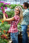 stock photo of greenhouse  - Gardening people - JPG