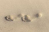 stock photo of footprints sand  - Footprints on yellow sand on the seashore - JPG