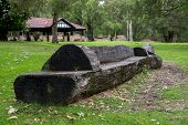 stock photo of carving  - Scenic carved wooden bench in Yanchep National Park - JPG
