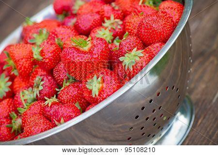 Colander Full Of Fresh Strawberries