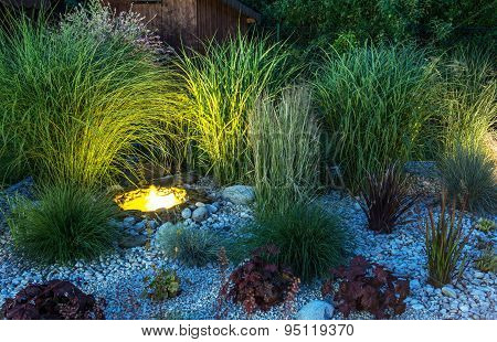 Backyard Garden Illumination