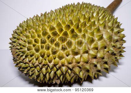 Malaysian Durian
