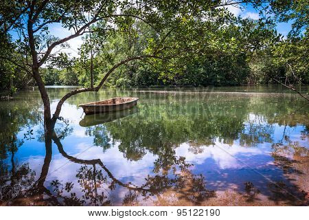 Reflections On Pulau Ubin