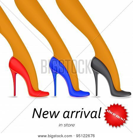Collection of fashion shoes, pumps, heels.