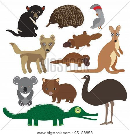 Animals Australia: Echidna Platypus Ostrich Emu Tasmanian Devil Cockatoo Parrot Wombat Crocodile Kan