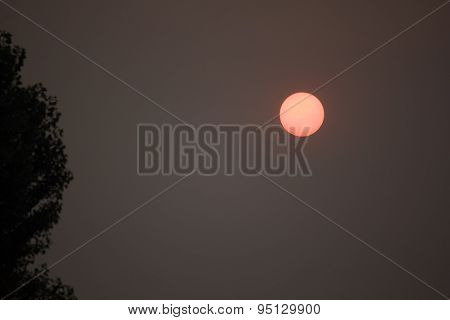 Apocalyptic Sun In A Dismally Smoky Gray Sky