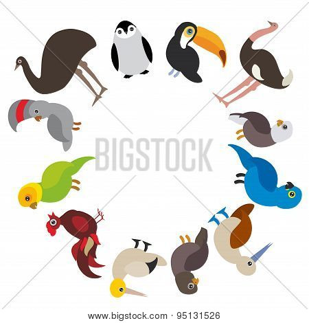 Cute Cartoon Birds Set - Gannet Penguin Ostrich Toucan Parrot Eagle Booby Cock, Round Frame On White
