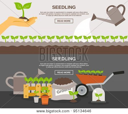 Seedling Banner Set