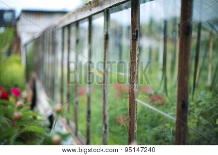 Part Of Old Greenhouse In The Garden.