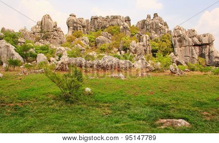 Shi Lin stone forest national park. Kunming.