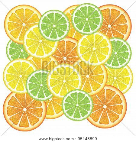Various Citrus Slices