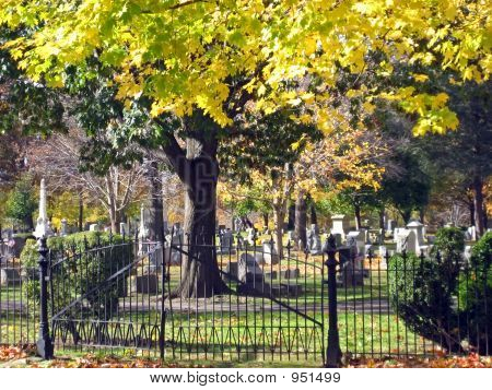 Cemetary As Seen Through Fence