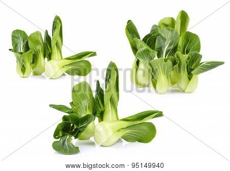 Set Of Organic Bok Choy Isolated On White Background