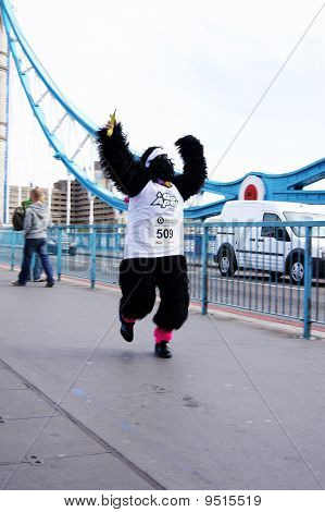 Single Runner At The 2010 Great Gorilla Run In Central London 26Th September 2010