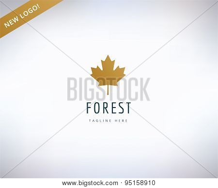 Leaf map logo icon. Nature, spa or leafs and forest. Stock design elements.