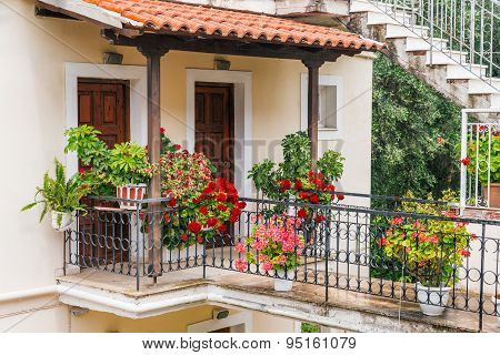 Pots with pelargonium in front of an traditional mediterranean house