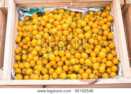 Ripe yellow tomatoes in a basket for sale in market.
