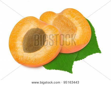Two fresh slices apricot and leaves