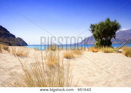Lonesome Sandy Beach