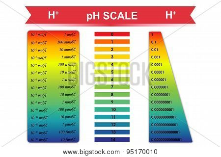 pH scale chart vector illustration
