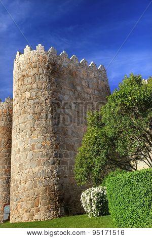 Avila Castle Walls Cityscape Castile Spain
