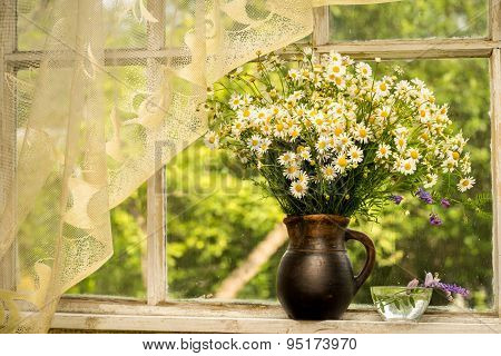 Still Life Bouquet Of Chamomiles On A Window Sill In A Sunny Rainy Day