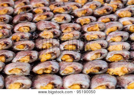 Snake Skin Gourami Fish,pla Salit