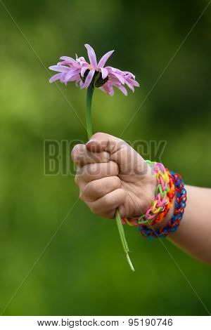 Child Hand In Rubber Band Bracelets With Flower