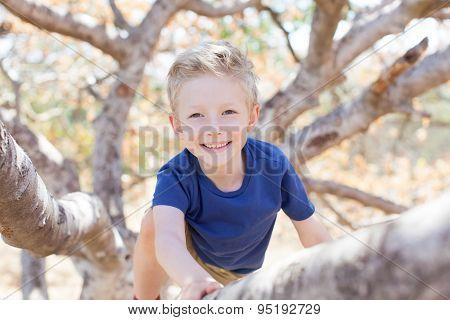 Kid Climbing The Tree