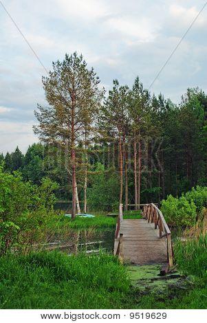 The Wooden Foot Bridge In Water
