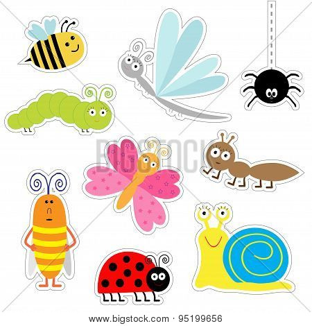 Cute Cartoon Insect Sticker Set. Ladybug, Dragonfly, Butterfly, Caterpillar, Ant, Spider, Cockroach,