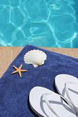 picture of scallop shell  - swimming pool wit flip flops scallop shell and starfish - JPG