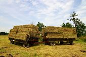 foto of hayride  - Large bales of straw on a tractor trailer - JPG