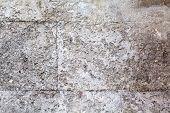 image of stonewalled  - Grey stonewall - JPG