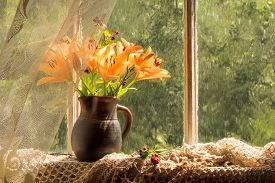 picture of asiatic lily  - Asiatic Hybrids orange lilies bouquet on a window sill in a sunny rainy day - JPG