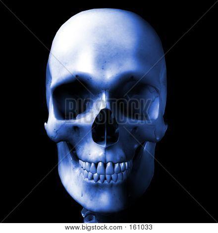 Skull 7