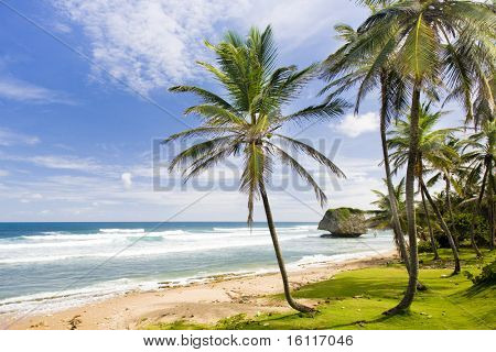 Bathsheba, Eastern coast of Barbados, Caribbean