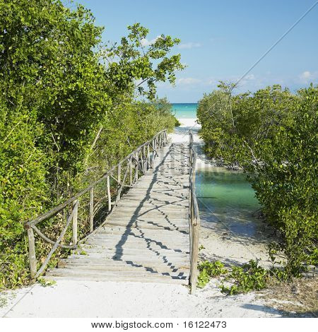 path towards Larga beach, Cayo Coco, Cuba