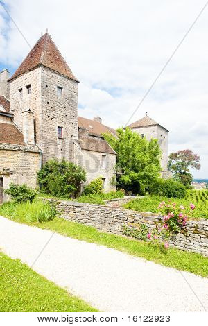 Gevrey-Chambertin Castle, Cote de Nuits, Burgundy, France