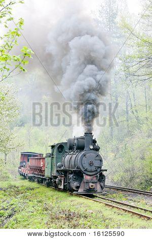 narrow gauge railway, Banovici, Bosnia and Herzegovina