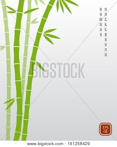 Chinese bamboo or japanese bambu asian vector background. Bamboo plant nature, exotic green stem of bamboo illustration