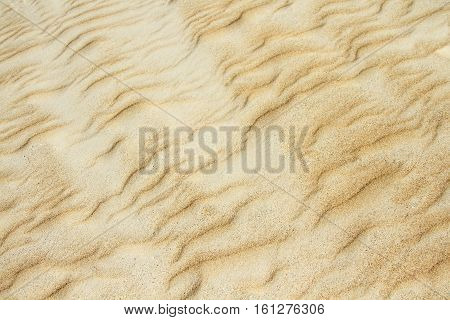 Yellow sand dune texture close up background